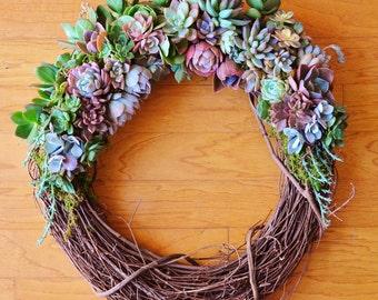 "XXL 24"" Succulent wreath, ""Adelaide Wreath"", grapevine trimmed with succulents, wedding wreath, garden wreath, rustic wreath, bohemian decor"