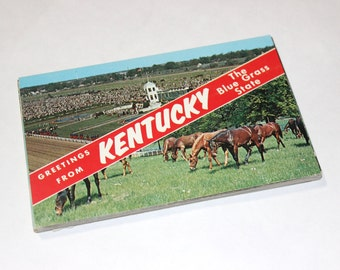 50 Vintage Kentucky Chrome Postcards Blank - Wedding Guestbook
