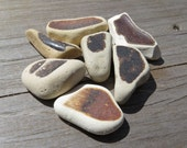Jumbo Earthen Brown, Sea Pottery, Seapottery, Maine Beach, Jewelry Mosaic, Natural Authentic, Ceramic