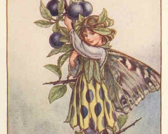 The Sloe Fairy - Cross stitch pattern pdf format