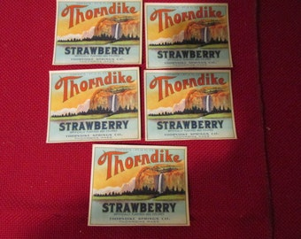 Set of 5 Antique Thorndike Springs Throndike Ma, Strawberry Soda Bottle Labels Dead Stock Never Used Color Lithograph Paper