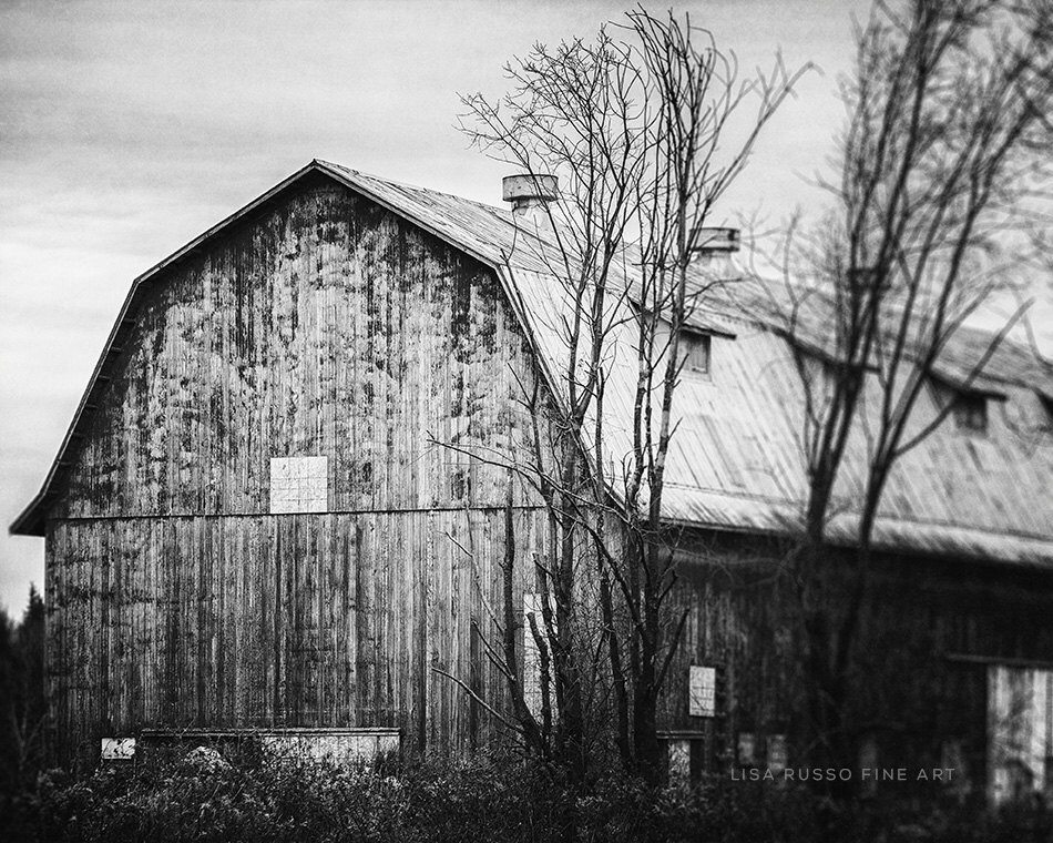 Red Barn Photography Rustic Home Decor Red By LisaRussoFineArt