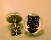 Owl Studs: Black and White Owl Fake Plug Earrings, Owl Jewelry, Owl Earrings, Owls, Fake Plugs, Animal Print