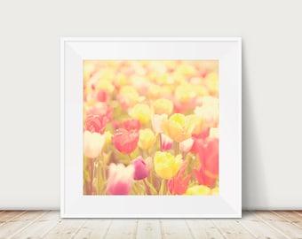 tulip photograph flower photograph tulip field photograph spring photograph nature photograph flower print nursery wall art