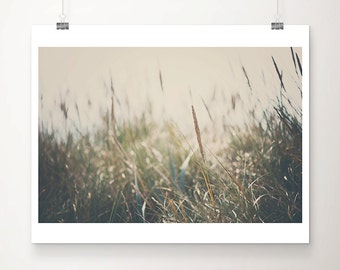 Beach Photography Beach Grass Photograph Nature Photography Green Grass Coastal Wall Art