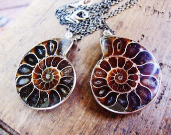 Ammonite necklace on aged brass chain
