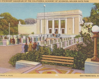 San Francisco, California, Steinhart Aquarium, California Academy of Sciences, Golden Gate Park - Linen Postcard - Unused (A1)