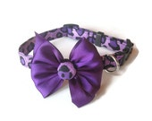Purple Leopard Dog Collar size Small