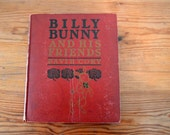 Billy Bunny and His Friends by David Cory (1917) Antique Illustrated Children's Book