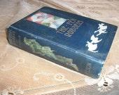 1900 Book 'The FEN ROBBERS' by T. Bevan - Adventure Story Daring Deeds