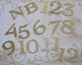 Gold Glitter Numbers  NB 1 -12  for Photo Picture Crafts Princess Birthday Banners months DIY Birthday Party 1 year old Banners