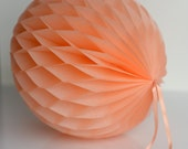 PEACH honeycomb ball - various sizes - pompoms party decorations- hanging decoration
