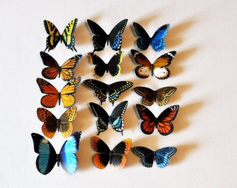 Butterfly Magnets Set of 15 Insects Kitchen Magnets Refrigerator Magnets Home Decor