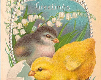Vintage Easter Postcard, Two Chicks by Broken Egg, Silver Beaded, ca 1910