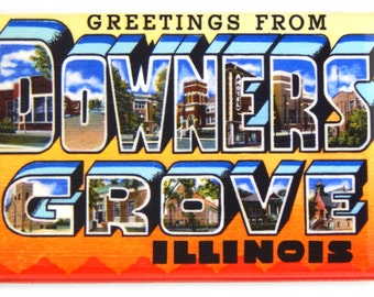 Greetings from Downers Grove Illinois Fridge Magnet