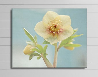 Yellow Flower Canvas Blue Wall Decor Bathroom Picture Floral Canvas Art Spring