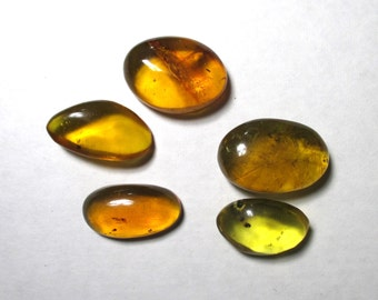 5 pieces of fossil Amber with insects from the Dominican Republic - 12 grams total - Natural , polished