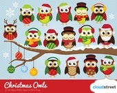 BUY 2 GET 1 FREE cute christmas owls clipart / christmas owl clip art / winter holiday festive illustration / commercial use ok