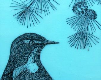 Bird and Pine Bough Original Encaustic Painting