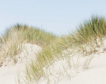 Point Reyes Photography - California Photo - Travel Photography - Beach Photo - Sand Dune - Fine Art Photography Print - Tan Blue Home Decor