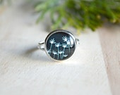Black and White Dandelion Ring Glass Dome Adjustable Ring Flower Ring  - J131-8