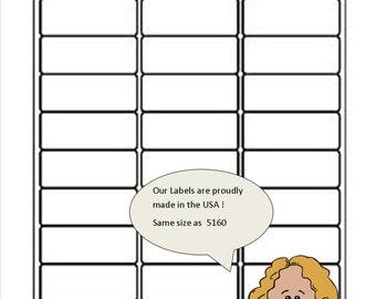 300 Address,Mailing, Return Address Labels  30 Labels Per 8.5 x 11 Sheet Similar to Avery 5160