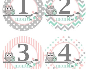 Baby Monthly Milestone Growth Stickers in Mint Grey Pink Owls Nursery Theme MS307 Baby Girl Shower Gift Baby Photo Prop