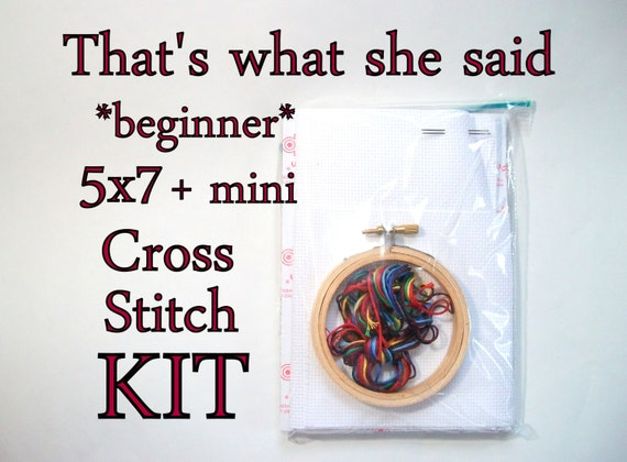 Cross Stitch Kit -- That's What She Said beginner cross stitch kit, easy cross stitch, novice, beginning, simple afternoon project