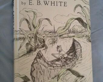 Stuart Little by E. B. White Vintage 1973 Children's Hardcover  Mouse
