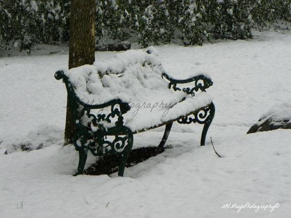 Snow Covered Bench / Park Bench Snow Print / Park Bench Picture / Picture Notecard / Winter Snow Scene