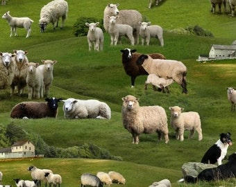 Fat Quarter Farm Animals Sheep Cotton Quilting Fabric - 50cm x 55cm