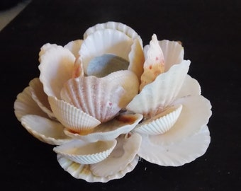 Sea shell flower