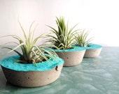 tiny round concrete container with aqua accent + optional air plant. modern wedding favor & decor. handmade minimalist planter pot.
