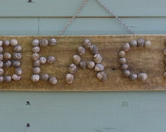 Driftwood and sea shell beach sign