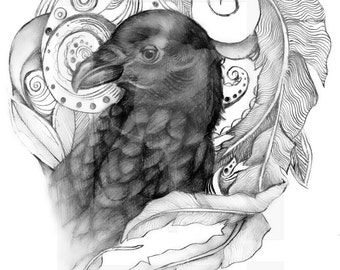 Pen and Ink of a crow