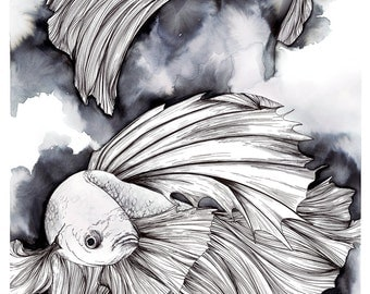 Pen and Ink drawing of Betta Fish, Betta Splendens