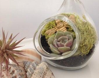 Bee Mini Terrarium Gift Favor Ornament