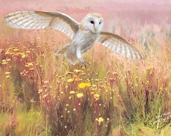 Wildlife art print, Barn Owl, wildlife print, wildlife photography, wildlife picture, bird print, bird art, wildlife painting, digital art