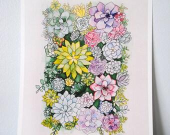 Watercolor Succulents Print
