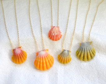 Pukuna La Sunrise Shell Necklace