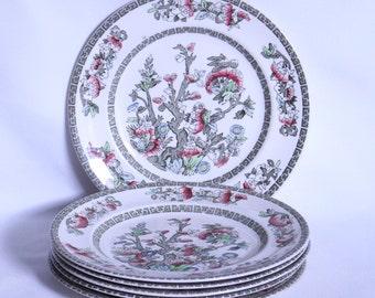 Gorgeous Vintage Johnson Bros 1960's Indian Tree Set of 6 Medium Sized Plates