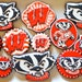 12 Assorted Vegan University of Wisconsin Bucky Badger Inspired Sugar Cookies