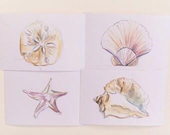 Seashells Print Set, Set of 3 Beach Seashell Prints