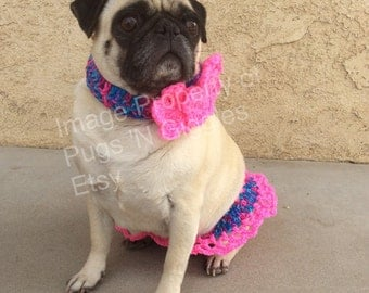 Bubble gum ruffle skirt and flower collar-pugs-cute pug clothes-pink-pug-spring