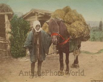 Japan peasant carrying sacks on mule antique hand tinted albumen photo