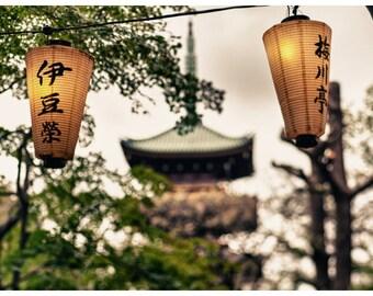 Travel Photography, Tokyo, Japan, Oeno Park, Metallic Photographic Print