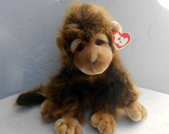 """This Monkey Will Steal Your Heart. """"Cha Cha"""" By TY"""