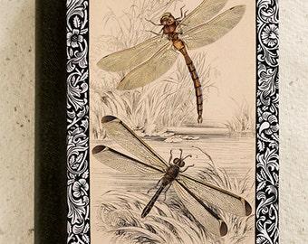 iPad - iPad Air - iPad Mini - Case - Dragonfly - Illustration - Drawing - Art - Vintage
