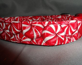Candy Peppermint Christmas Dog Collar