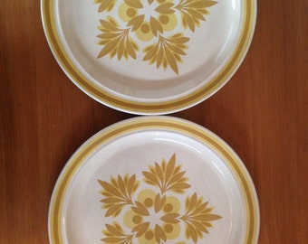 On Sale! Royal China Omegastone Plates - Set of 2